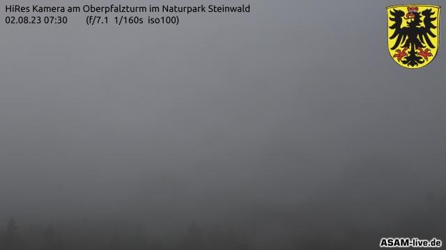 WEBCAM Oberpfalzturm im Naturpark Steinwald